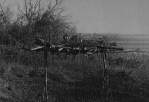 Burial Platform photo by Donald Thomson