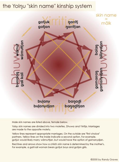 Yolngu skin name or malk system