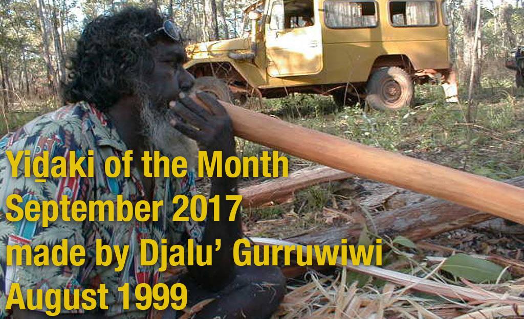 Yidaki of the Month by Djalu